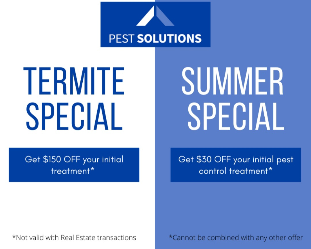Pest Solutions special